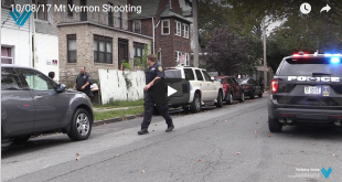 Mt Vernon Shooting